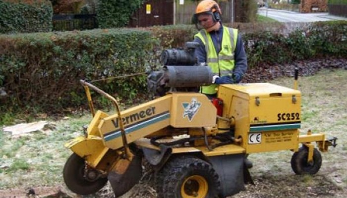Stump Grinding in Belbroughton