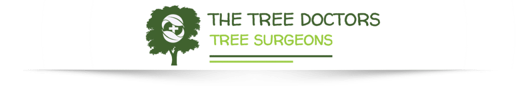 The Tree Doctors