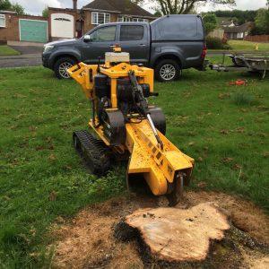 Tree Stump Grinder