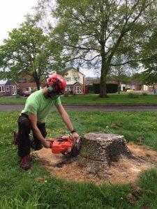 Scoring a Tree Stump
