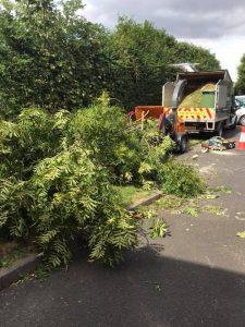 highway maintenance van collecting tree after taken down
