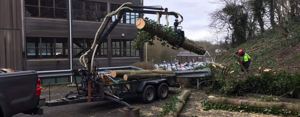 tree surgeons loading logs onto pickup crane