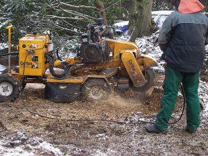 stump grinding process