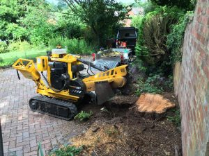 Stump grinding next to a wall - yellow machine