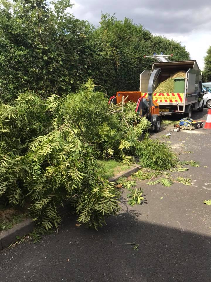 highway maintenance van collecting tree after taken down