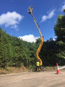 Hedge Maintenance, large yellow crane with surgeon in air