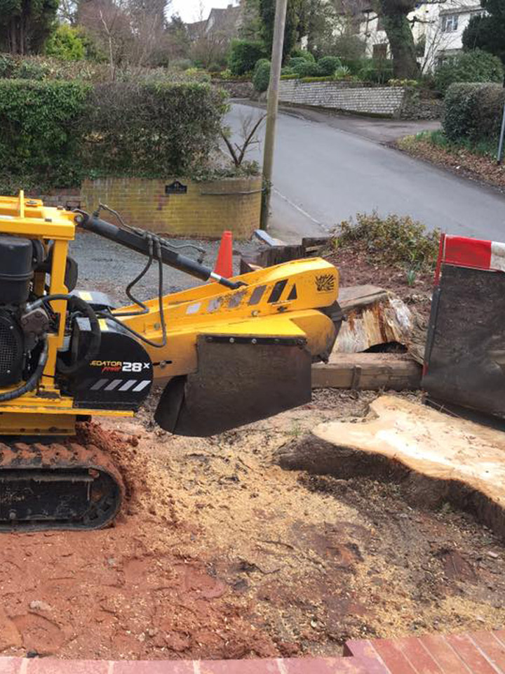 stump grinding on front drive