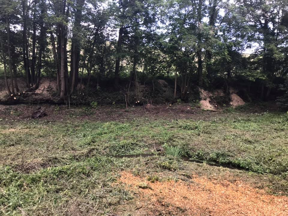 tree felling site clearance service