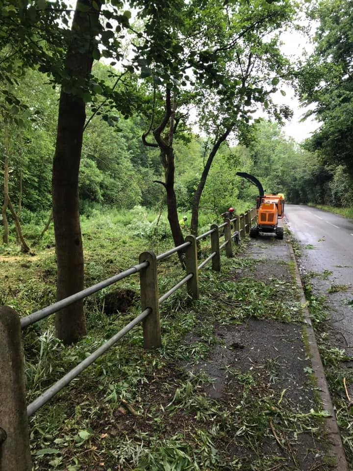 site clearance service - clearing side of the road