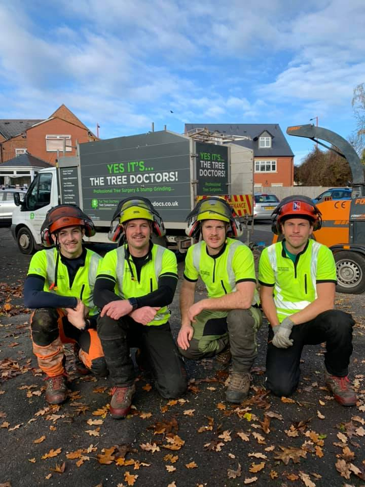 the tree doctors team