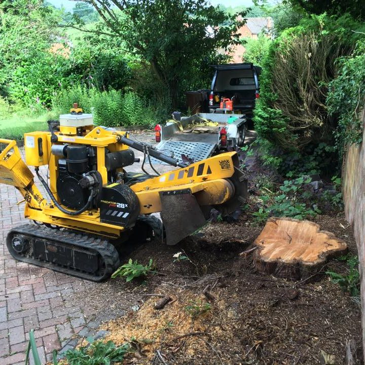 Stump grinding next to a wall - yellow machine